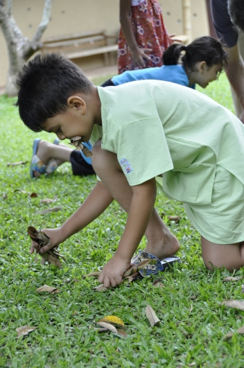 Green activity, picking up dry leaves at Panyaden