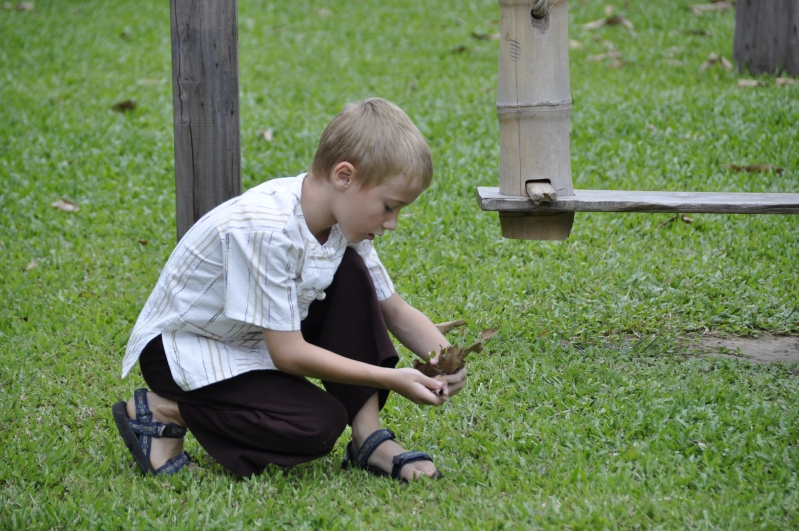 Panyaden student picking dry leaves to help keep school yeard tidy