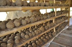 Hand-made EM balls by students and teachers of Panyaden School