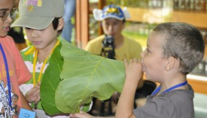 Panyaden Summer School student blowing horn he fashioned out of a leaf