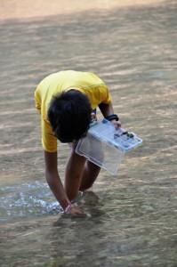 Panyaden Summer School student looking for rocks in a lake