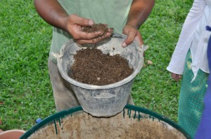 Dry ingredients for making organic compost at Panyaden School, green school in Chiang Mai