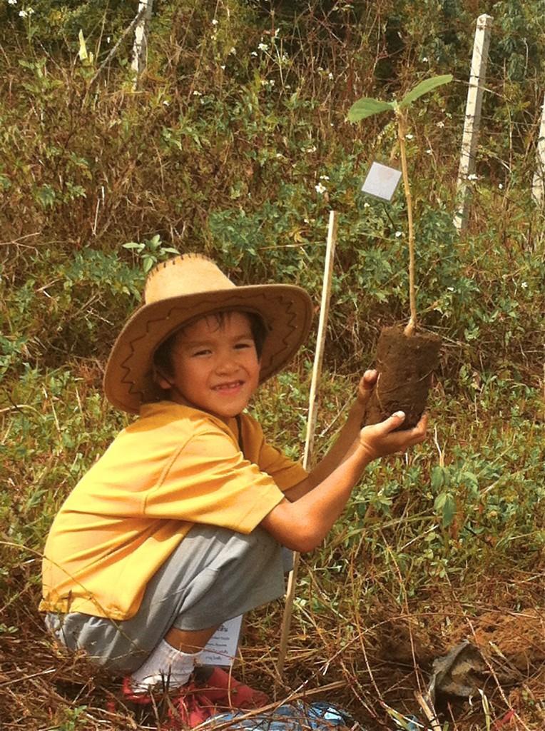 IMG_9228 Panyaden School student planting tree in Chiang Mai