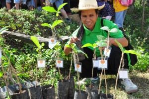 Panyaden School's tree planting at Pure Farm, Chiang Mai