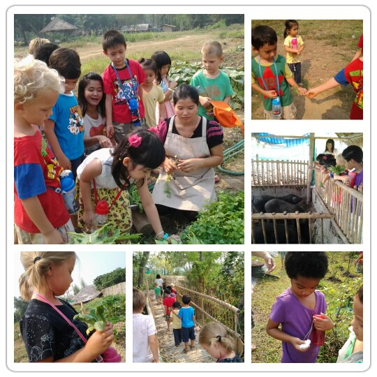 Panyaden Summer School 2013: Learning about trees and vegetables in Chiang Mai