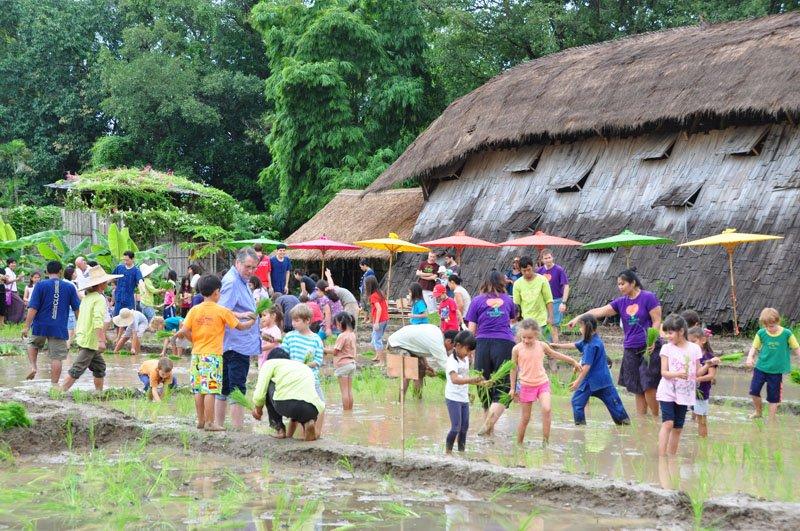 dsc_6899 Panyaden School students planting rice in honour of Her Majesty The Queen of Thailand