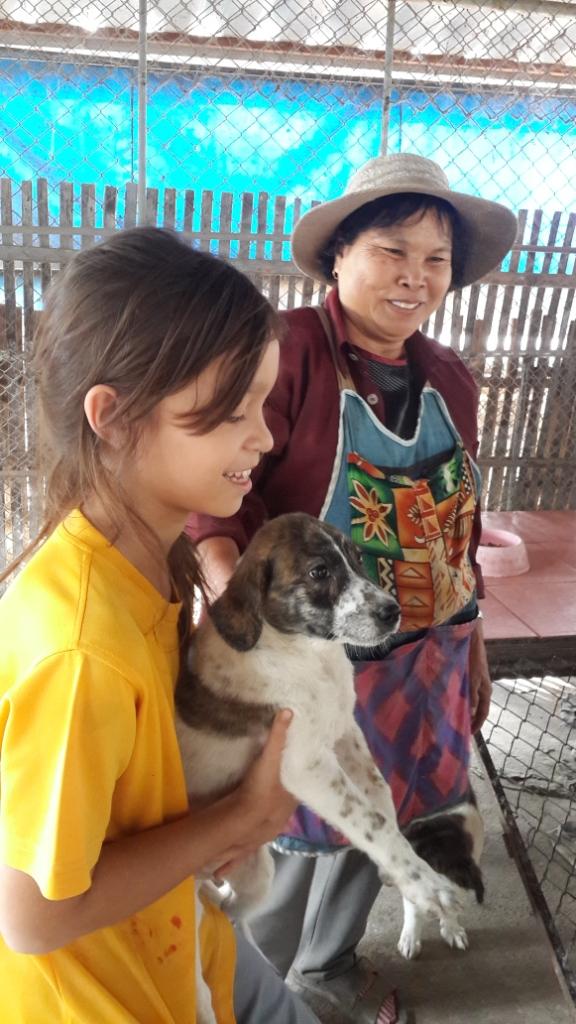 Panyaden Prathom student picks up rescued dog at Santisook
