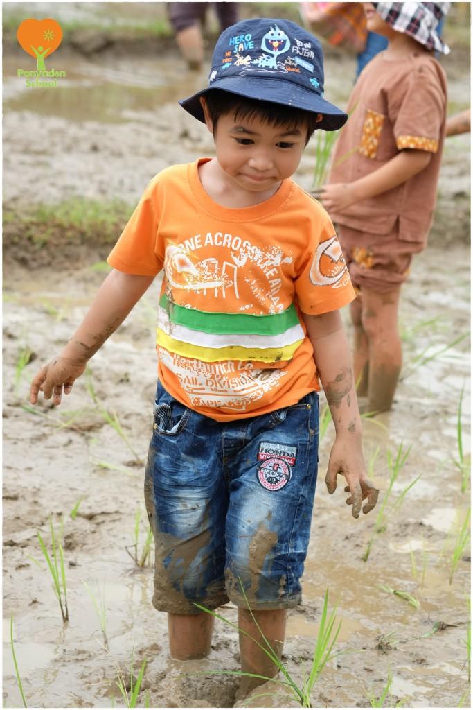 DSCF9045 Mother's Day rice planting at Panyaden School