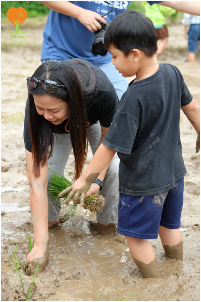 DSCF9056 Mother's Day rice planting at Panyaden School