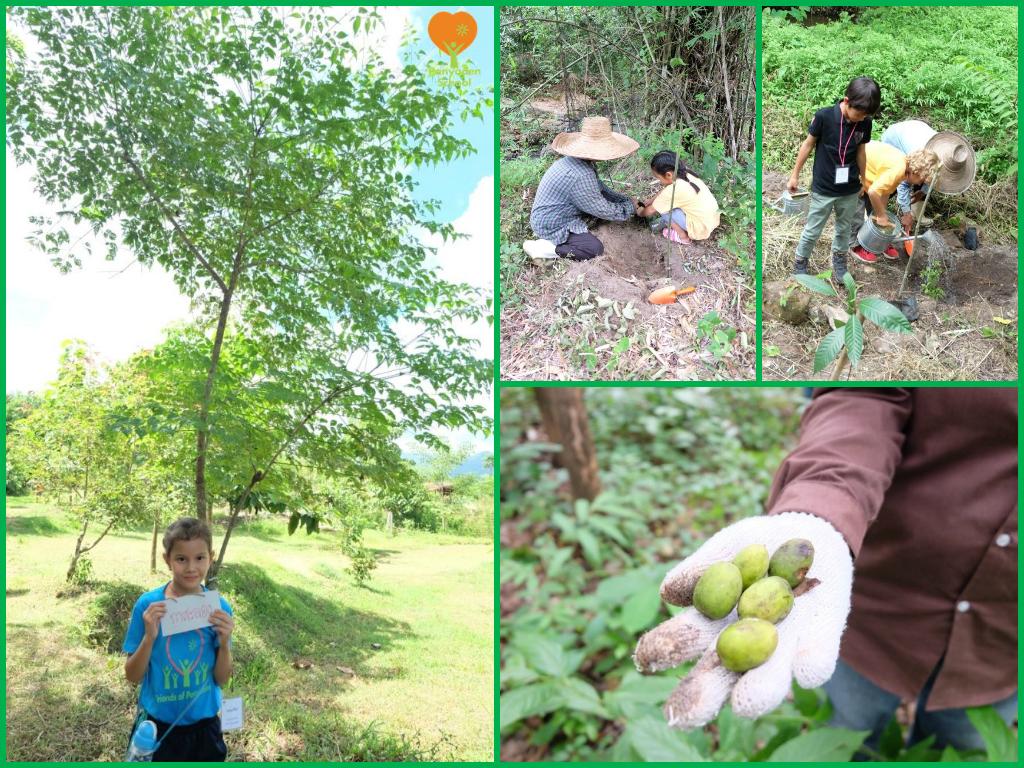 Panyaden Prathom Pure Farm visit