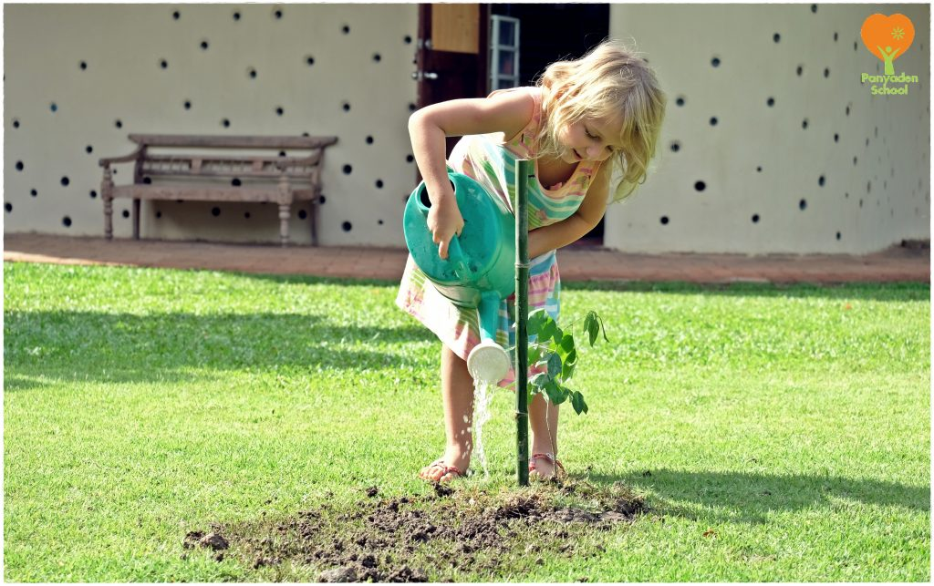 DSCF4202 Tree Planting Day 2016 at Panyaden School Chiang Mai