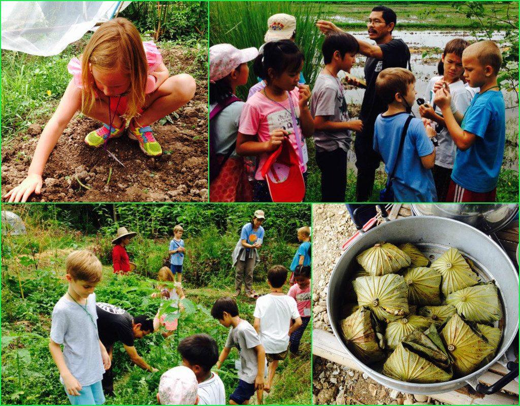 P2 (Grade 2) Panyaden School students visit organic farm in Chiang Mai