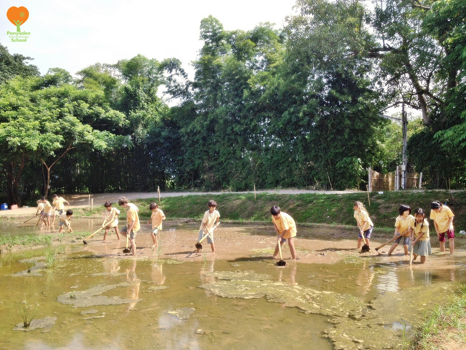 Panyaden International School Life Skills programme: Year 5 (Y5) students preparing field for rice planting at school.