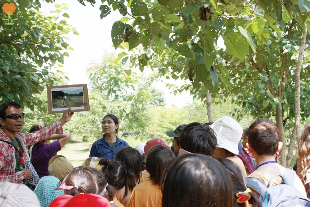 Panyaden International School Year 2 and 5 students visit Pur Farm to plant trees