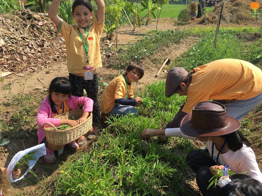 Panyaden International School Chiang Mai students picking vegetables for cooking during their rice mill visit
