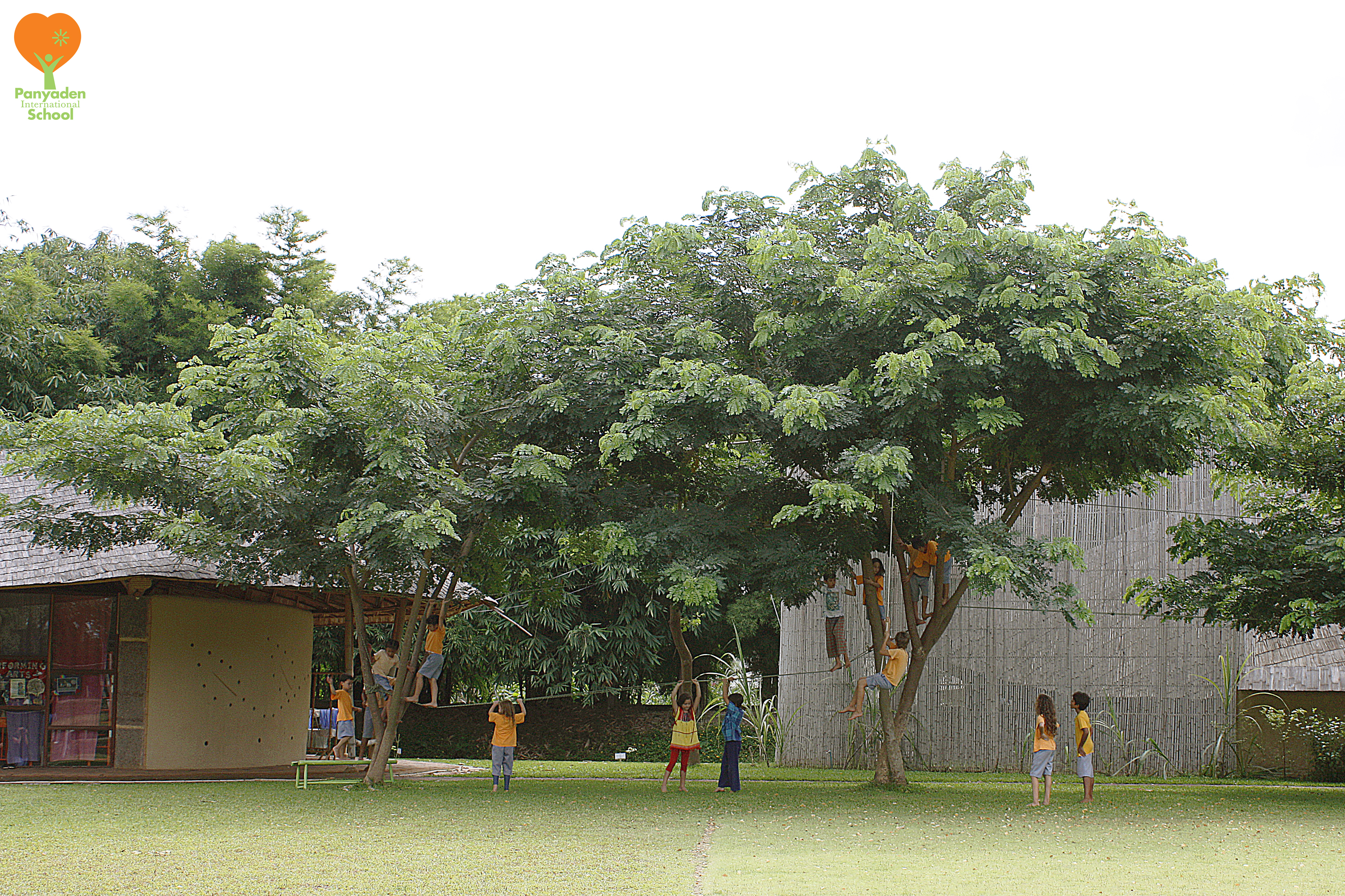 Panyaden students enjoy the trees in our school playground