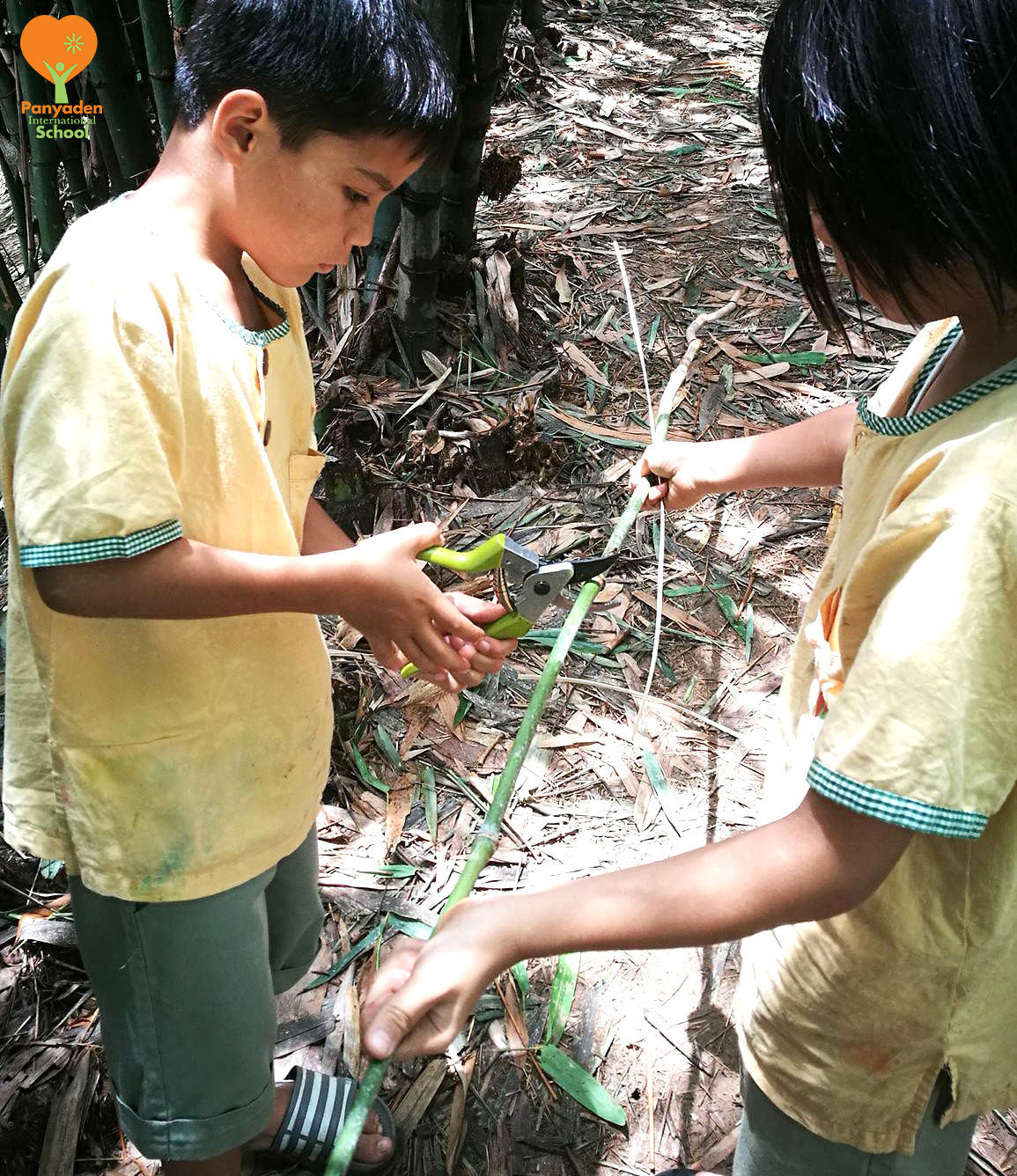 Panyaden Y3 students cutting bamboo to make their own straws